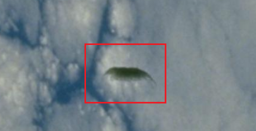 UFO / Space creature Above the Earth in NASA Space ...