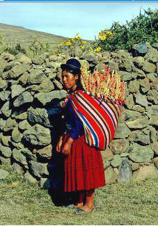 The Aguayo Ancient Andean Wisdom For Moms Page 1
