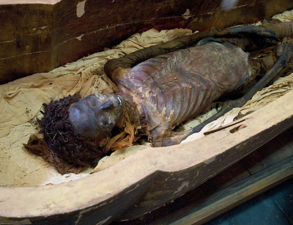 Celebrity Dead Bodies Pictures Read herodotus: the histories