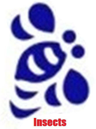 Unilever Logo: An Hidden Message? The story of Life on this planet ...