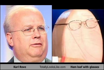 karl rove ham 