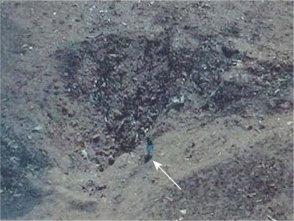 Flight 93 Crash Site Photos submited images.