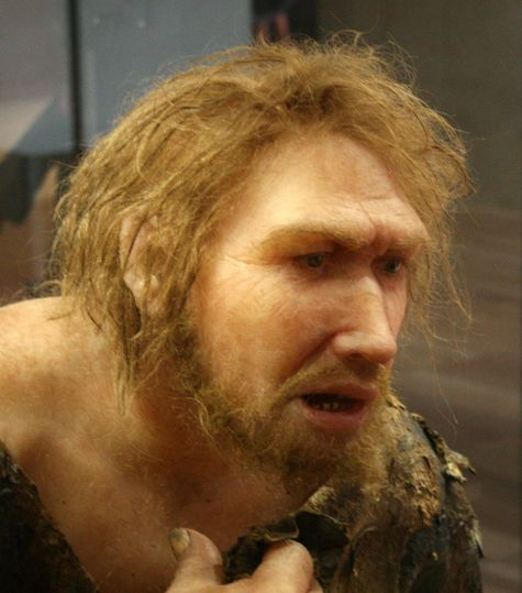 Neanderthal+dna+in+modern+humans+discovery