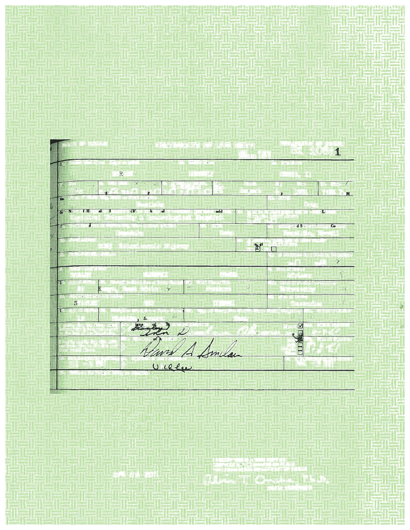 Obamas new birth certificate proven to be fake hours after obamas new birth certificate proven to be fake hours after release page 1 aiddatafo Images