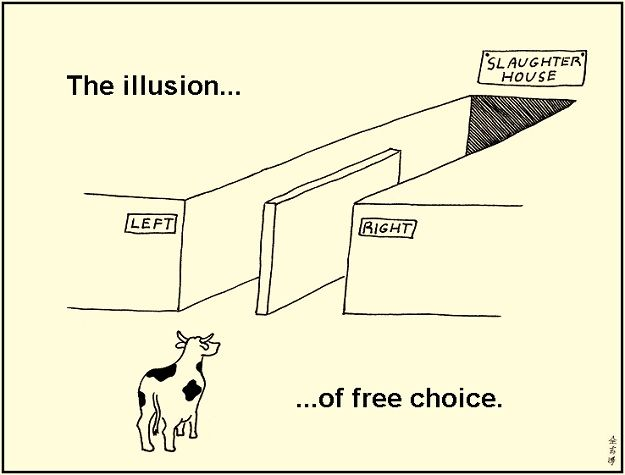 The illusion... of free choice - www.abovetopsecret.com