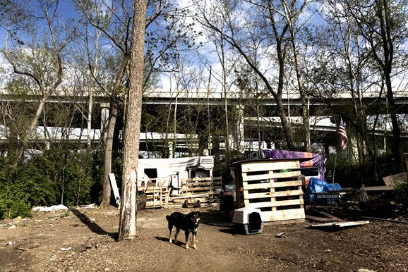 Sosa one of the many dogs living in Tent City watches over the tent home of Cowboy his owner. Cowboy has been in Tent City in Nashville Tennessee for ... & Homeless Camp in Nashville (Photo Essay) page 1