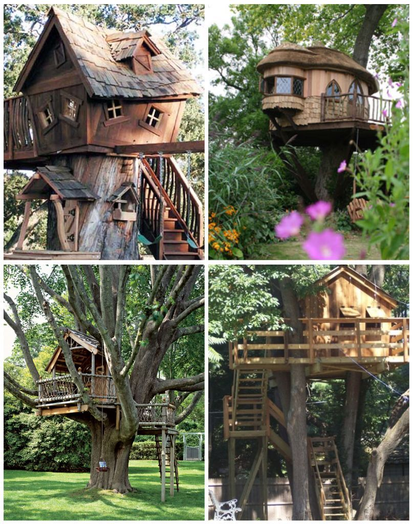habitable treehouses page 1