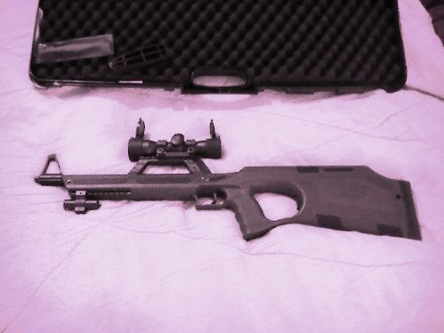 survival weapon review walther g22 page 1 rh abovetopsecret com Walther GSP Rifles Walther GSP Rifles